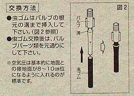 虫ゴム-5b.jpg