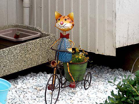 cat05143_c.jpg